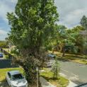 Image for 6, Lyall Street, SOUTH PERTH, WA, 6151