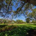 Image for 6/154 Aberdeen Street, Northbridge WA 6003