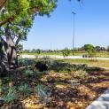 Image for 91 Lawley Street, Tuart Hill WA 6060